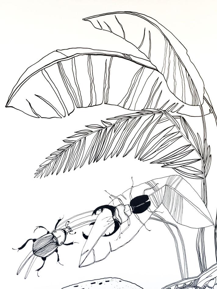 Maľovaná stena Chrobáky a dinosaury 6